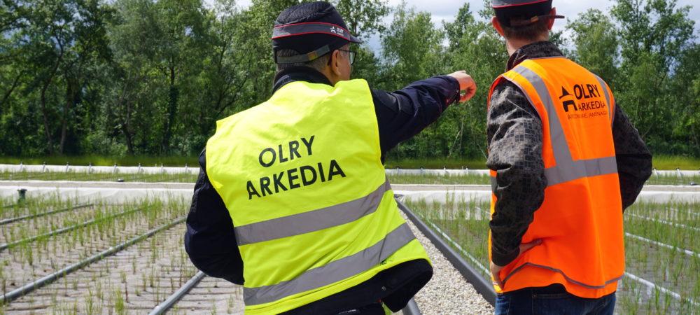 Arkédia Olry c'est bien plus qu'un groupe