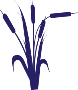 Arkedia BTP et environnement